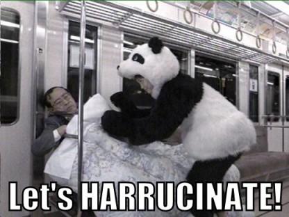 Panda woman